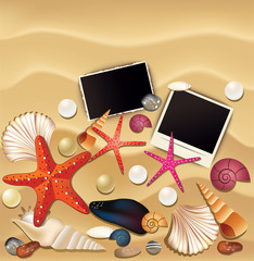 Picture, shells and starfishes on sand background. Vector