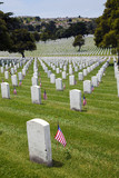 Headstones at United States National Cemetery poster