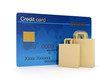 3d illustration of Credit Card and a group of paper bags for sho