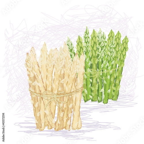 fresh green and white asparagus