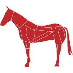 carne di cavallo