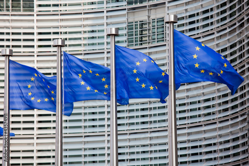 Fototapeta European flags in Brussels