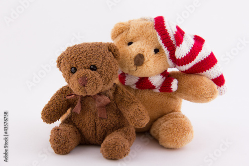 Duo d'oursons en peluche