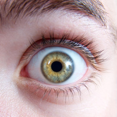 Erschrockener Blick – Auge mit grüner Iris