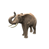 3D Elephant With 2 Mice