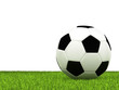 Soccer ball on green grass and white background