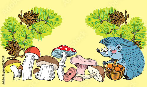 Hedgehog and mushrooms
