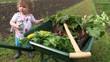 récolter les légumes avec bébé