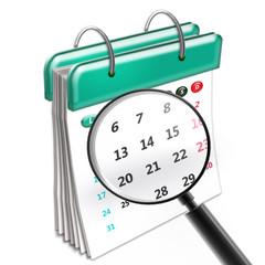 Calendario con Lupa