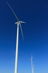 Wind turbines generating 'green' energy