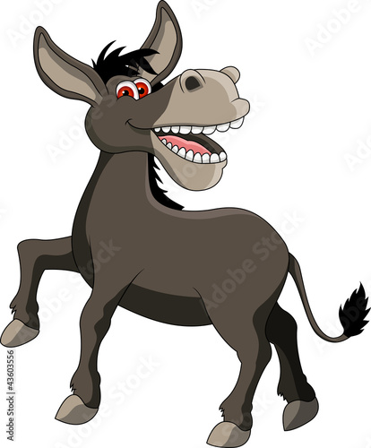 funny donkey cartoon smiling