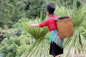 Femme Mong avec panier
