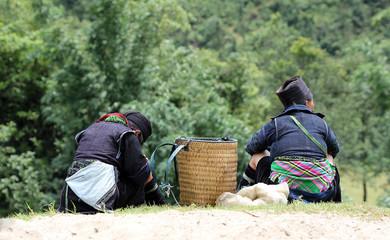 Mongs noires assisses dans la montagne