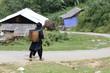 Mongs noires marchant dans la montagne
