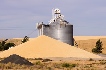 Grain elevator with grain wasted