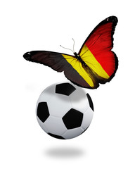 Concept - butterfly with Belgian flag flying near the ball, like