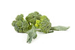 broccoli on a white background