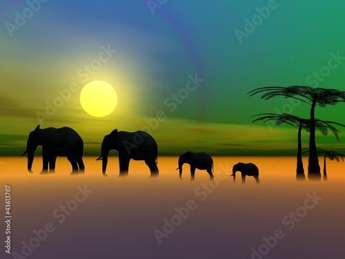 elephants and sun