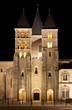 The basilica du Sacre Coeur in Paray-le-Monial, night shot