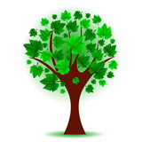 Vector illustration of green tree