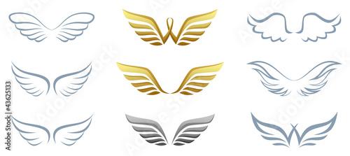 Wing - 43625133