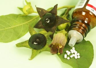 Globuli und Tollkirsche, Atropa belladonna