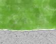 Fondo, papel rasgado, verde