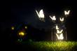 Butterflies - 43635909