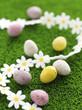 Mini eggs on grass