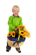 Little boy with flower basket