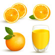 Vector set of fresh oranges and a glass of orange juice