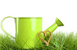 Gardening concept - watering can and golden heart in green grass