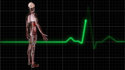 Body and ECG Trace.