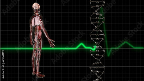 Body and ECG Trace and DNA Molecule