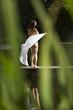junge Frau (17) im Bikini, Tuch, am Bade-See