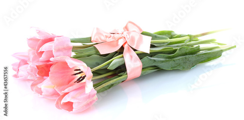 beautiful pink tulips isolated on white.