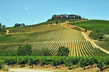 I vigneti del Chianti - Toscana