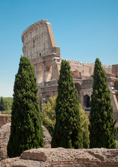 Colosseum view from forum