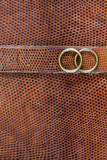 Snake leather texture with rings