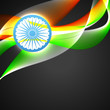 indian flag vector flag
