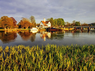 houses by river thames
