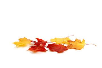 Herbstblättern