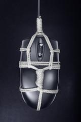 BDSM mouse