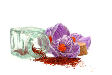 Saffron - spice and flowers isolated