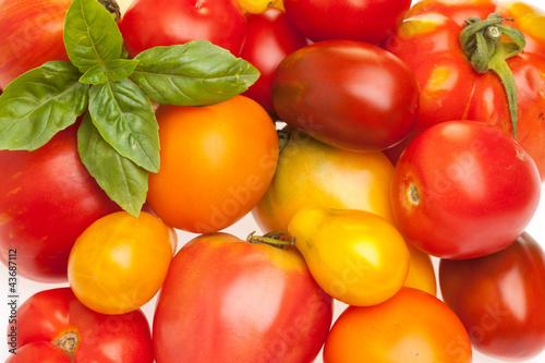 Fläche aus unterschiedlichen Tomatensorten