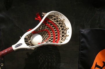 Lacrosse Head with Ball 3