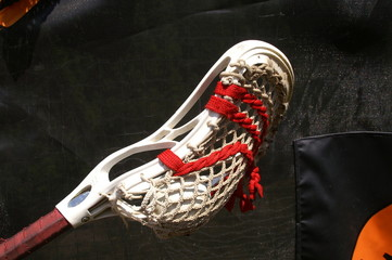 Lacrosse Head with Ball 2