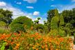 Magnificent tranquil landscape.   Botanical Garden.  Thailand.