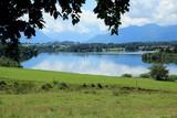 Fototapety Bergsee mit Wiese