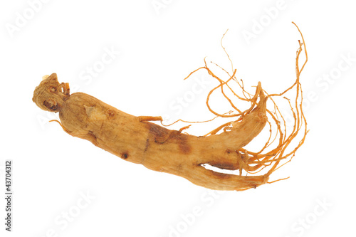 Dried Ginseng Roots Isolated On White Background